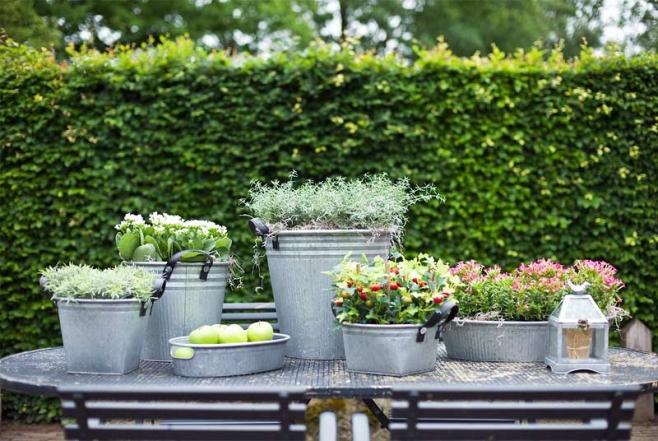Dekorieren und Bepflanzen vom Feinsten - mit Zink